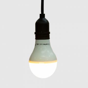 蛋鸡专用特种光谱LED灯泡 5W